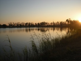 One of the Scenic Lakes in the Al-Faw Palace Complex